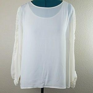 Joseph A Sheer Blouse Plus XL NWT Winter White